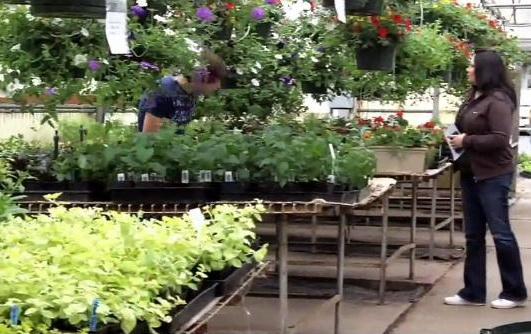Educational Greenhouses | Commercial Greenhouses Manufacturer