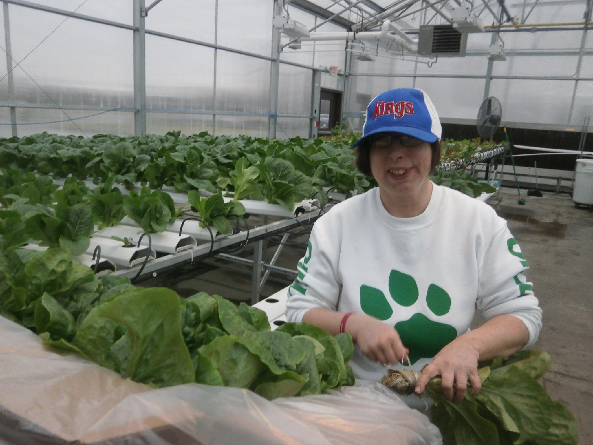 TAC Industries - Hydroponic Greenhouses Grow Voc Rehab Opportunities | Integrity Wealth Partners