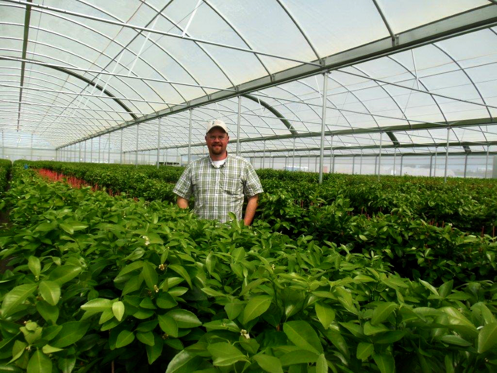 The Burchell Nursery Takes on Large Project with the Help of Agra Tech | Commercial Greerhouse Manufacturer