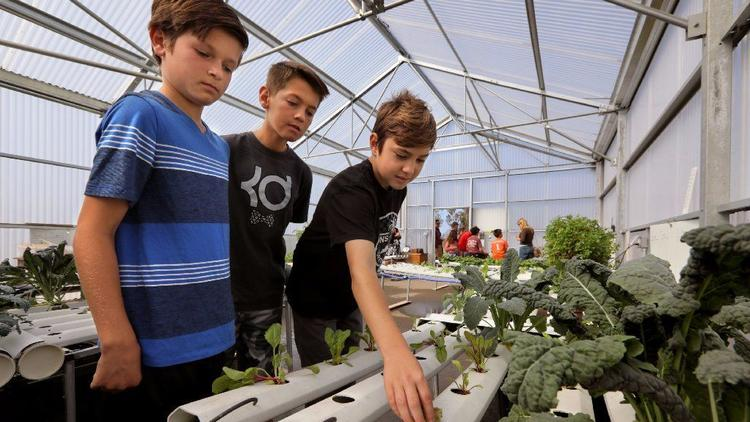 Oceanside Unified School District Gets Into Greenhouse Growing | Commercial Greerhouse Manufacturer