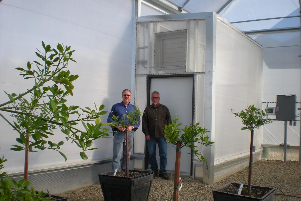 Insulator Greenhouses For One Of A Kind Custom Greenhouse At Monrovia Nurseries Woodlake Ca