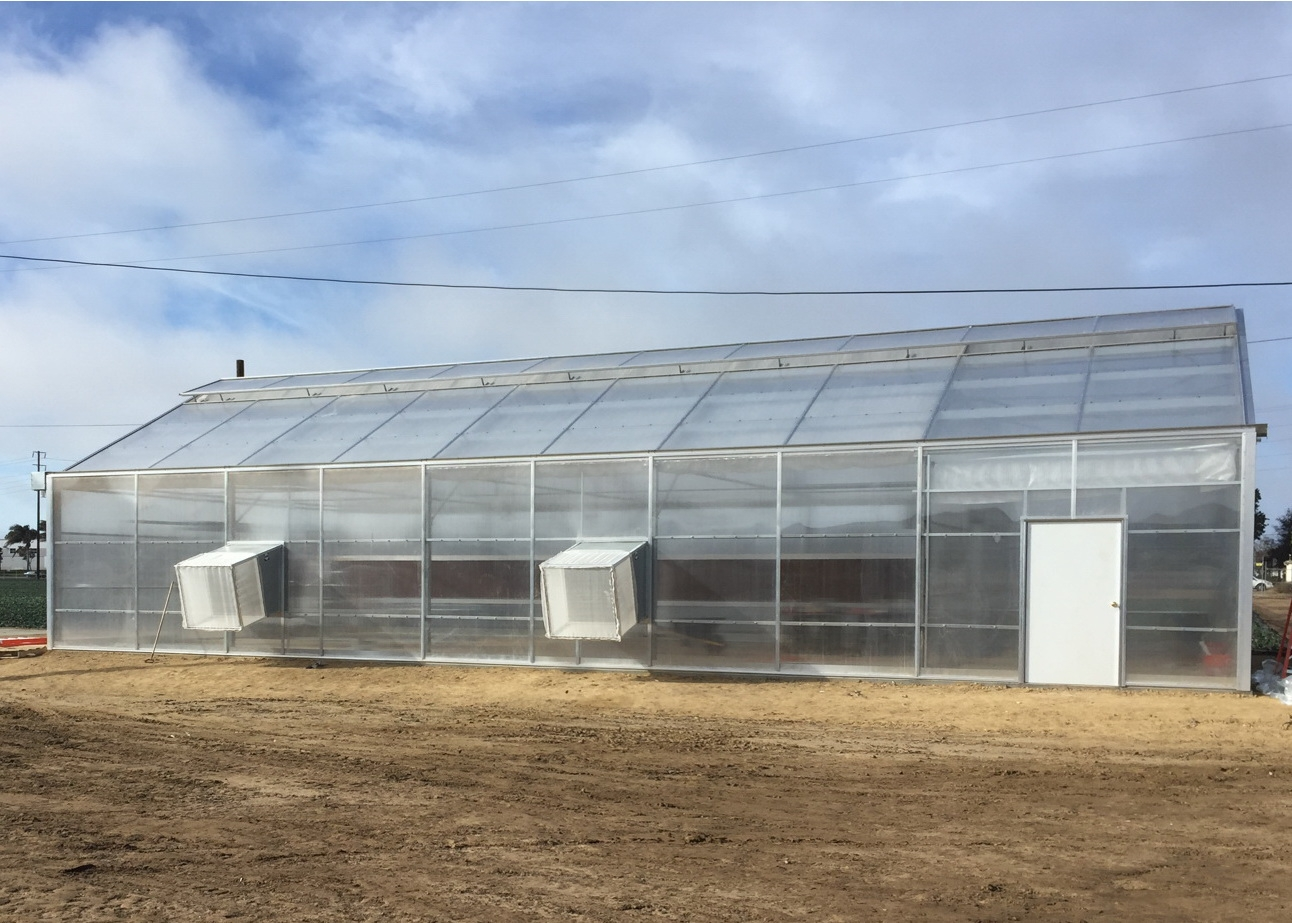 Completed greenhouse showing screen boxes over the exhaust fans | Commercial Greenhouse Manufacturer