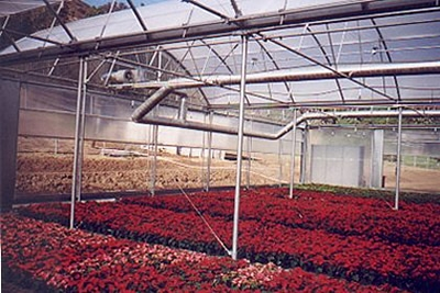 Radiant Heaters | Heating systems | Commercial Greenhouses Equipment