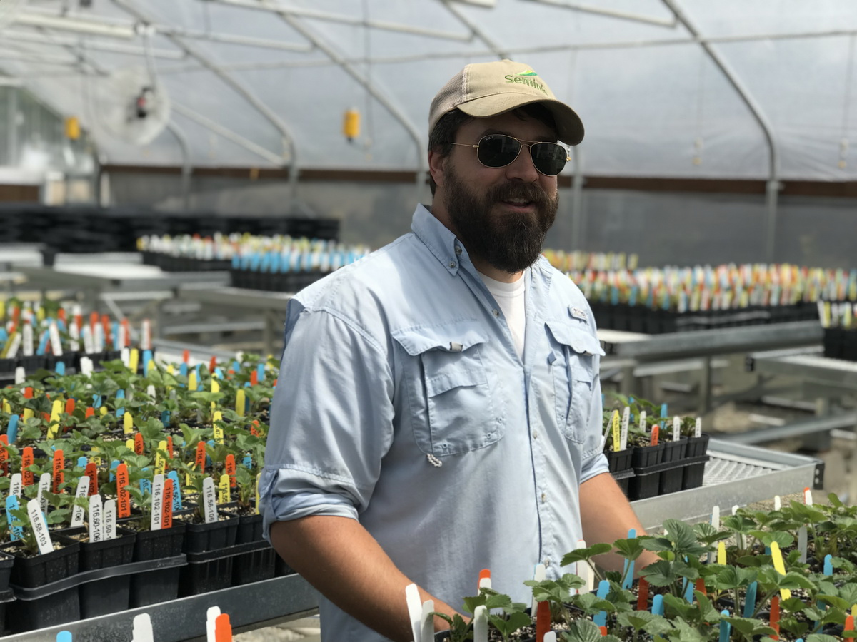 California Berry Cultivars Acquires Second Agra Tech Greenhouse | Agra Tech