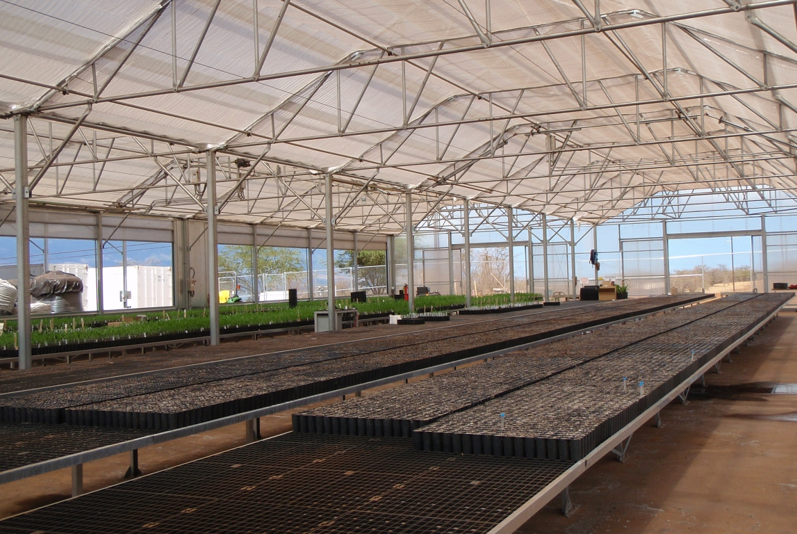 Agra Tech Solar Light Greenhouses for Maui R&D Company | Maui R&D Company | Maui, Hawaii