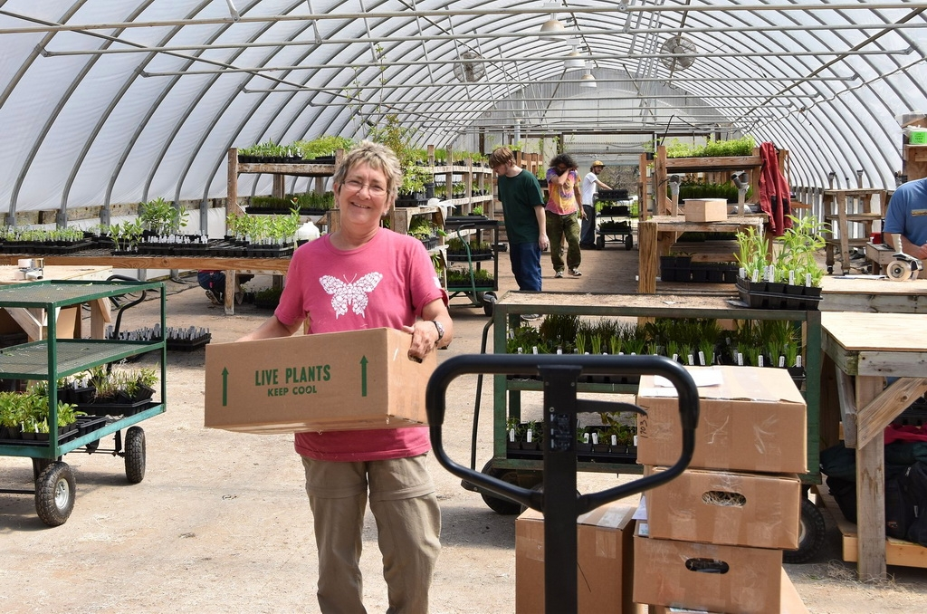 The versitile hoop houses are used for packing as well as growing