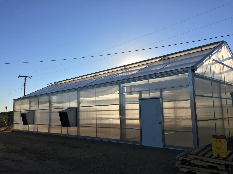 Agra Tech Solar Light | Agra Tech