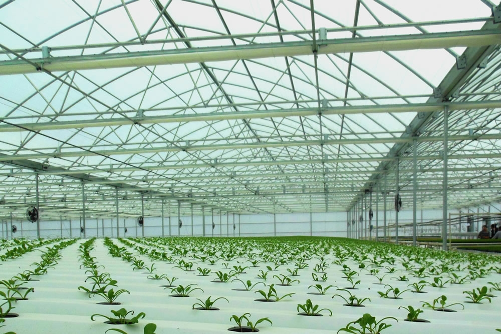 Agra Tech Continental greenhouse in production | Commercial Greenhouse Manufacturer