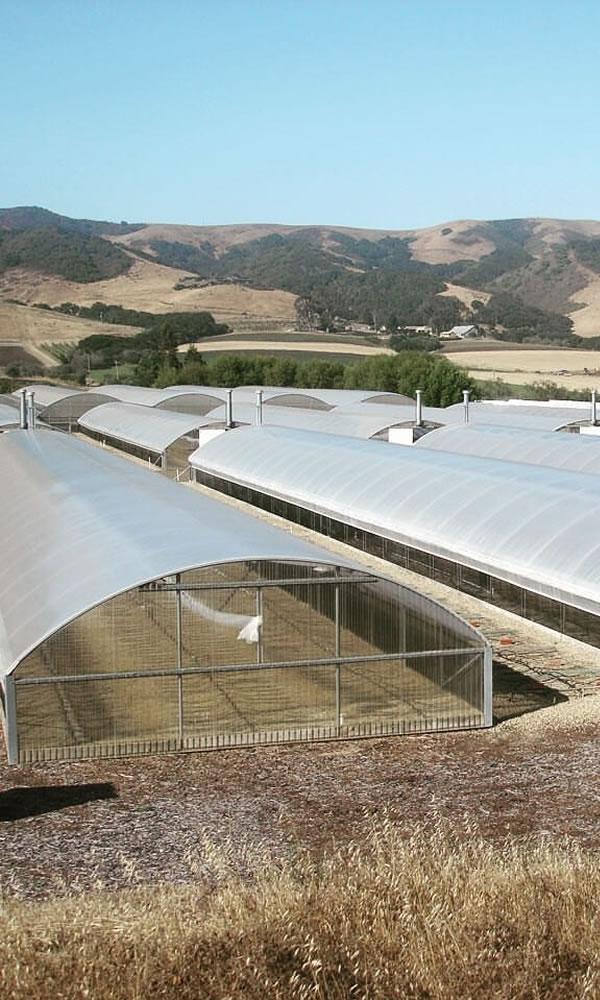 Agra Tech Inc | Pittsburg | California