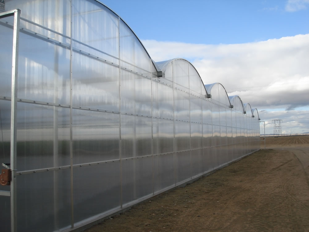 Willits & Newcomb Insulator Greenhouses  | Agra Tech